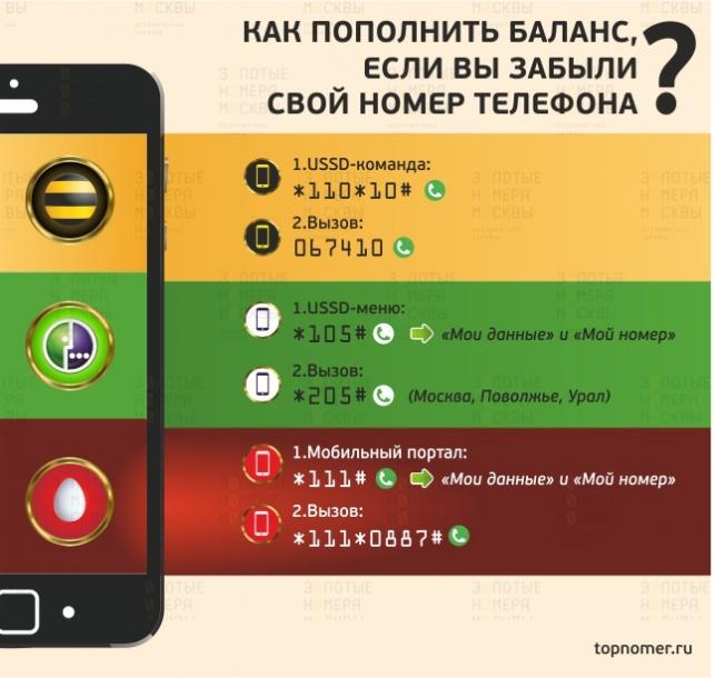 Как пополнить баланс, если вы забыли свой номер телефона - ТопНомер.ру e139b2168d4